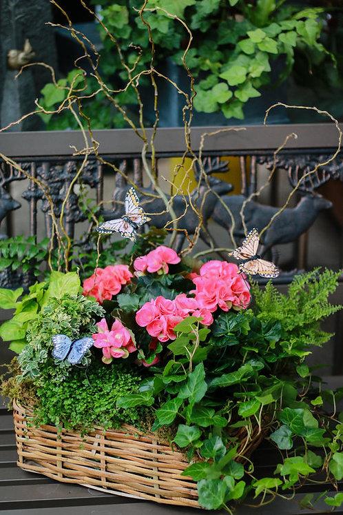 Blooming Basket - Large