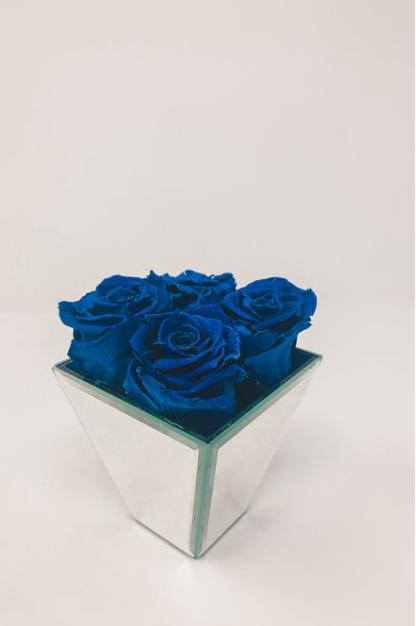 Blue Forever Roses