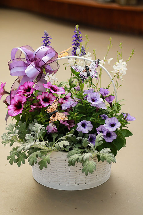 Butterfly Annual Basket
