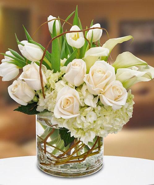 Wonderful Whites