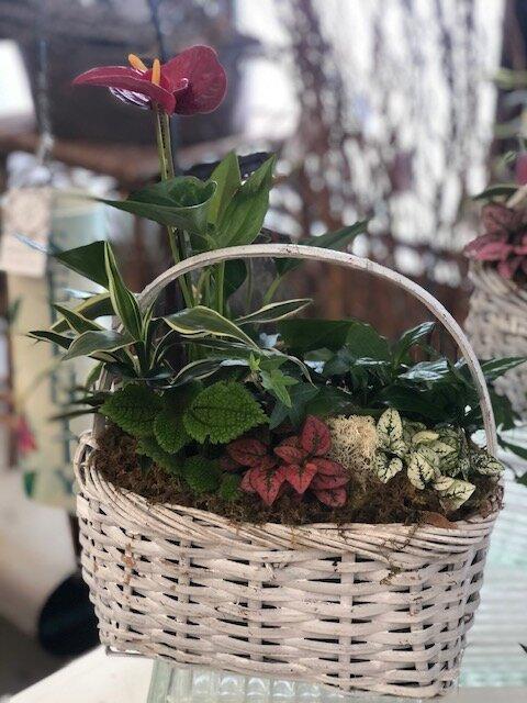Basket European Garden