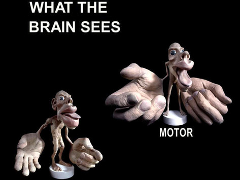 How Your Brain Sees Your Body - What is Osteopathy Series