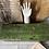 Thumbnail: Gorgeous Green Vintage Long Shallow Trunk