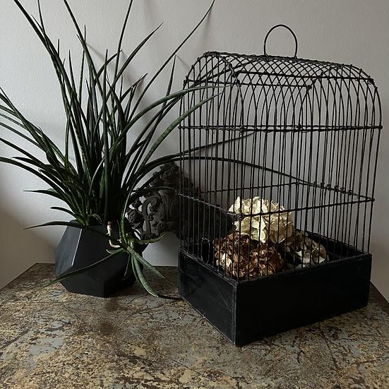 A Vintage Songbird Cage