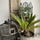 Thumbnail: Decorative Vintage Metal Hanging or Standing Birdcage