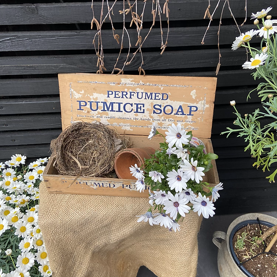 Vintage Pumice Soap Delivery and Display Box