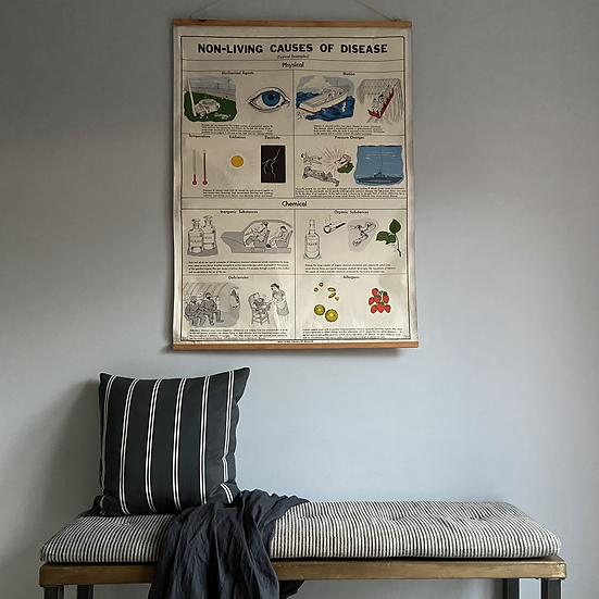 Extra Large Double Sided Educational Wall Chart