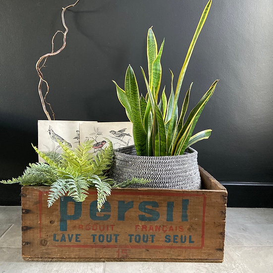 French Vintage Persil Crate