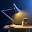 Thumbnail: A Genuine Herbert Terry Anglepoise Lamp
