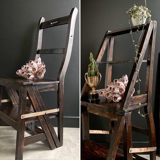 Vintage Metamorphic Chair/Ladder