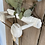 Thumbnail: White French Coat Hooks