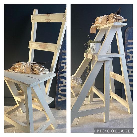 Vintage Metamorphic Chair/Ladders