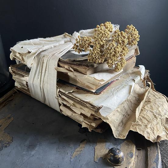 Vintage Books, Ephemera and Accessory Bundle #1