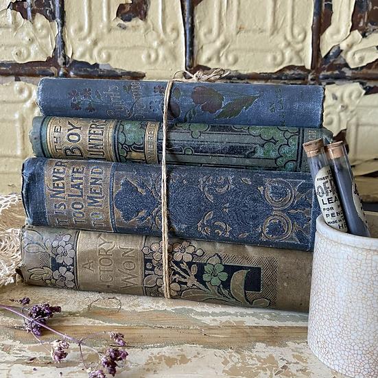 Blue Vintage Book Bundle