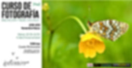 anuncio curso-iniciacion.jpg