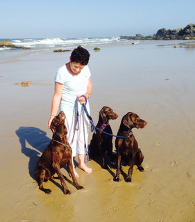 Digger, Livvie and Bond, Port Macquarie, NSW