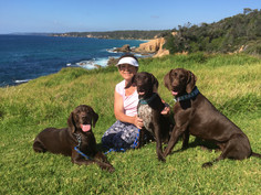 Digger, Bond, and Gracie, Bermagui NSW