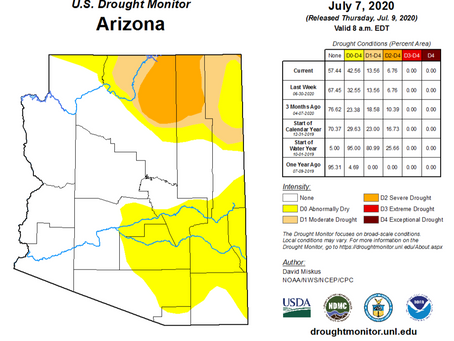 Drought Update-Mid-Year 2020