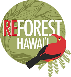 reforest logo.png