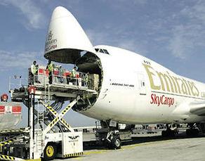 Sky Cargo.jpg