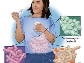 Probiotics Can Boost Immunity Against COVID-19