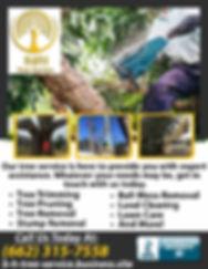 B & H Tree Service.jpg