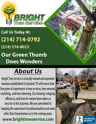 Bright Tree Service Correction 3.jpg
