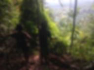 Jungle trekking in Tangkahan, North Sumatra