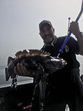 Lingcod & Bottom Fishing