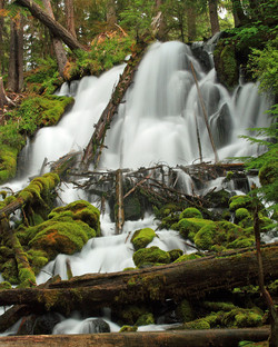 614px-Clearwater_Falls,_Oregon