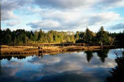 South_Slough_NERR_-_Oregon