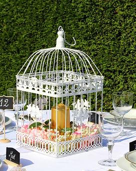 cage à oiseaux (2).JPG