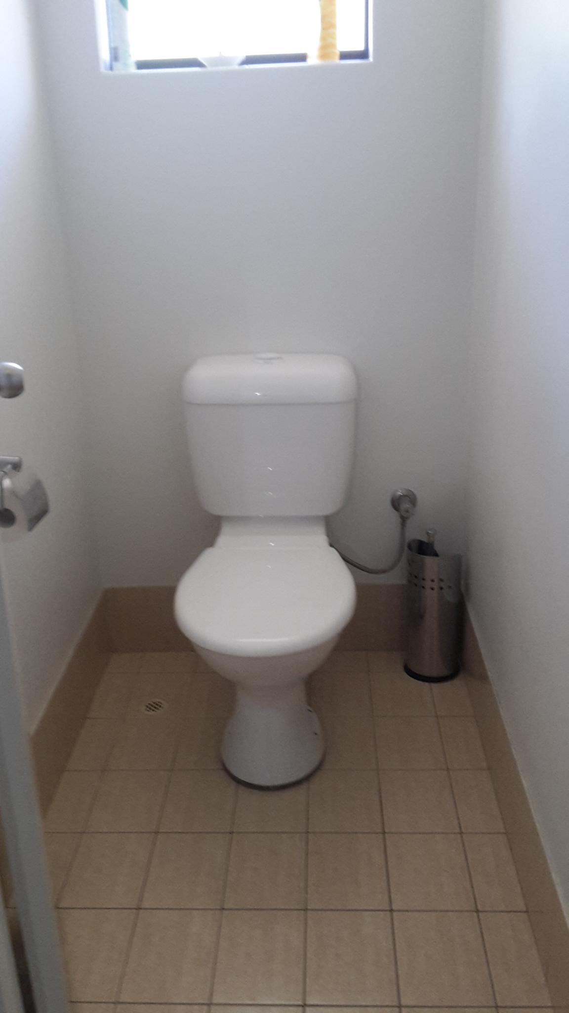 Before Toilet / Bathroom Renovation