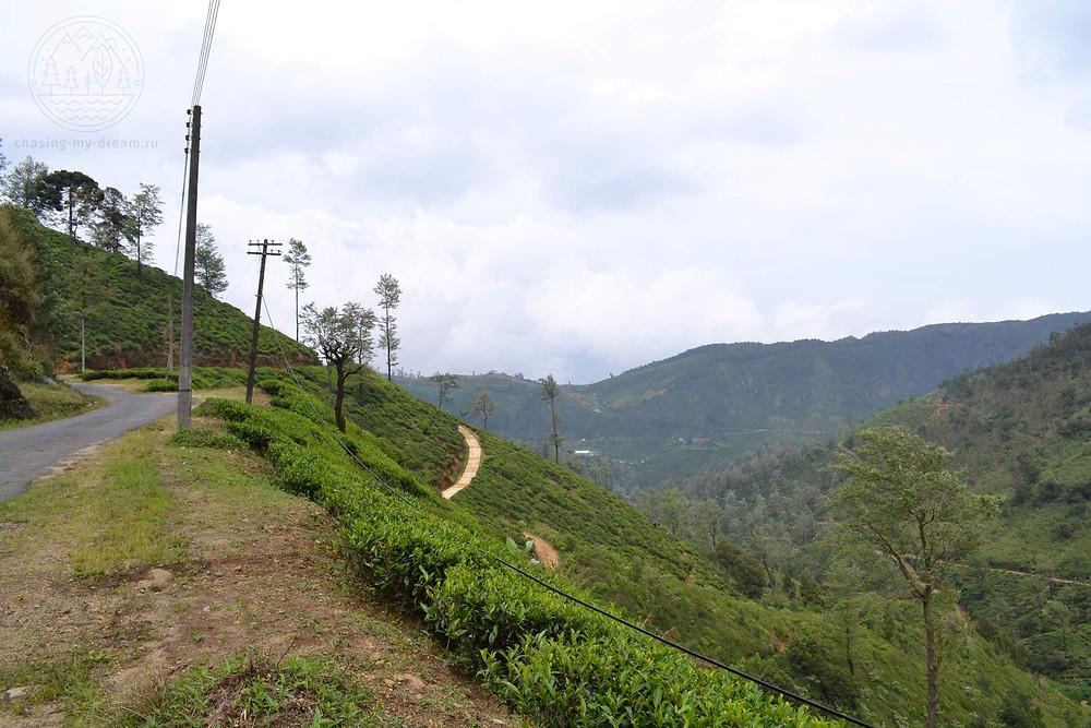 природные красоты Haputale, самобытно по миру на Шри-Ланке