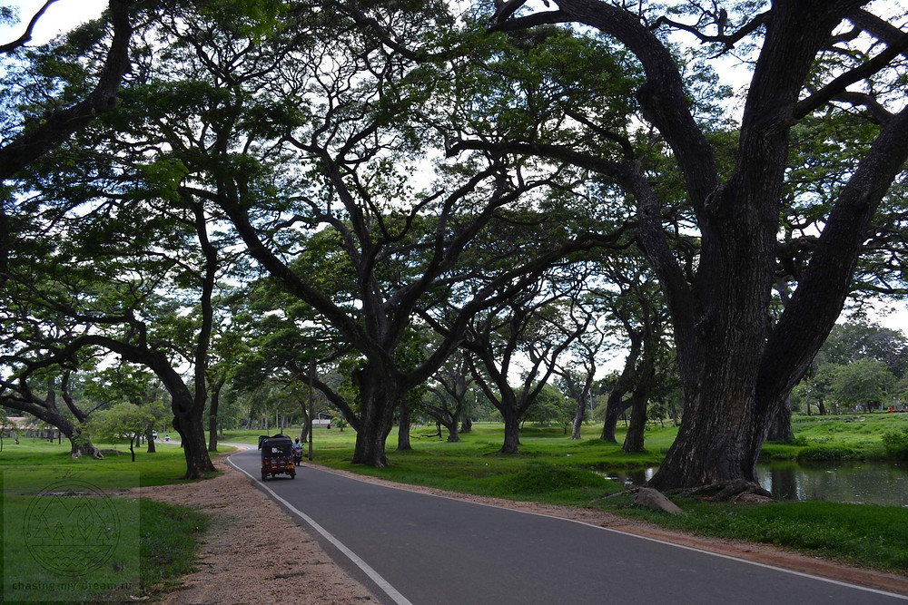 город Анурадхапура, самобытно по миру на Шри-Ланке