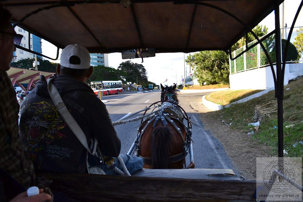 едем на конной повозке - самобытное путешествие по Кубе