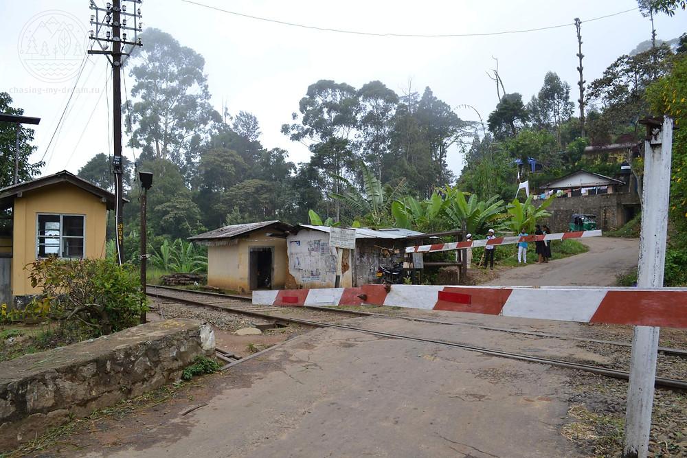 железнодорожная станция Glenanore station на Шри-Ланке