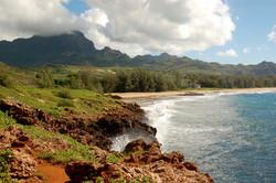 """""""Hawaiian Paradise"""" © DJM Media"""