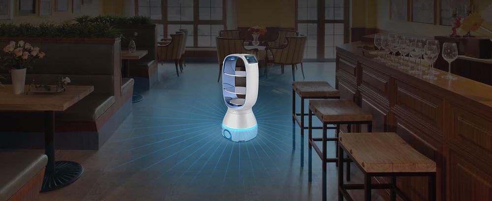 Peanut - Service Robot in a Restaurant