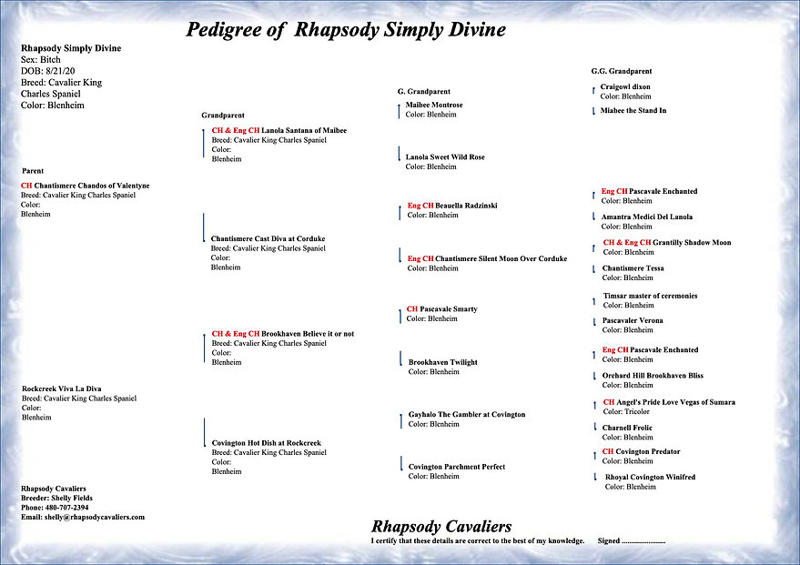 Rhapsody Simply Divine - pedigree copy.j