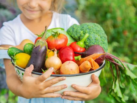 Uma alimentação saudável, prazerosa e nutritiva para as crianças crescerem com saúde