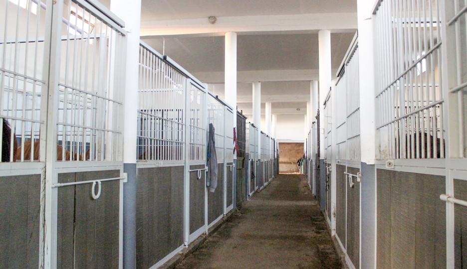 Stall-3.jpg