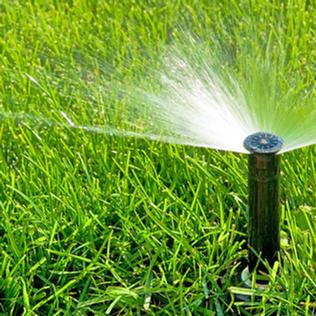 Lawn Irrigation System Design & Installation