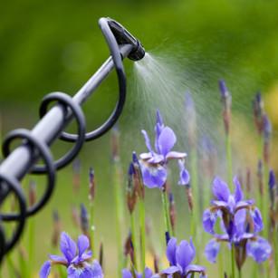 Home & Lawn Pest Control