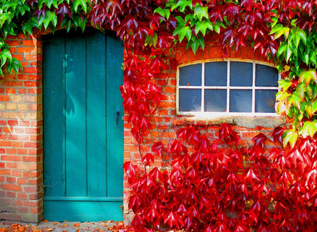 Why a Storm Door is Vital For Your Home
