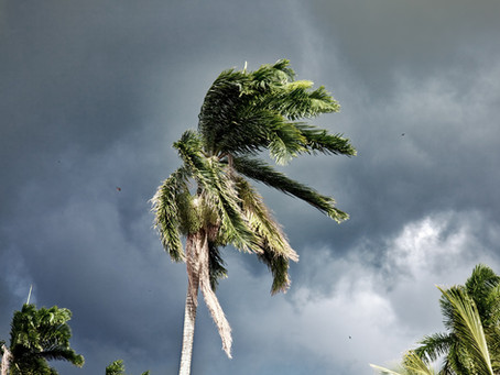 Preparation Tips for Your Home this Hurricane Season