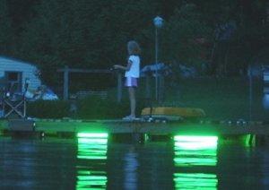 UNDERWATER FISH LIGHT DM260