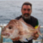 Shikari Fishing Charters: Perth pink snapper