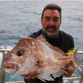 Shikari Fishing Charters: Perth pink snapper