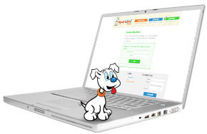 Online access to Sparkito! - An english spanish success curriculum for Pre K and Kindergarten.